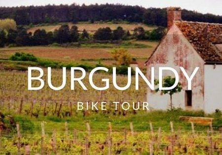 BurgundyCoverThumb