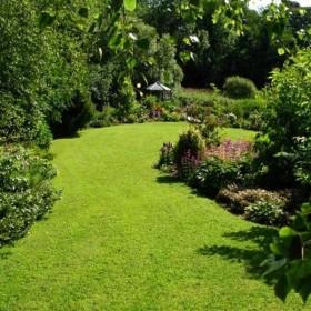 the bay garden