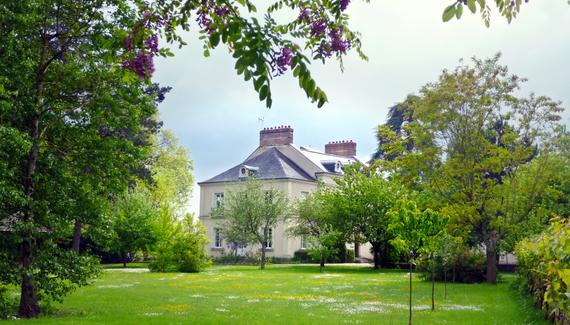 chambres-d-hotes-en-touraine-cedre-et-charme-depuis-la-verdure-du-parc.jpg_gallery_preview.jpg
